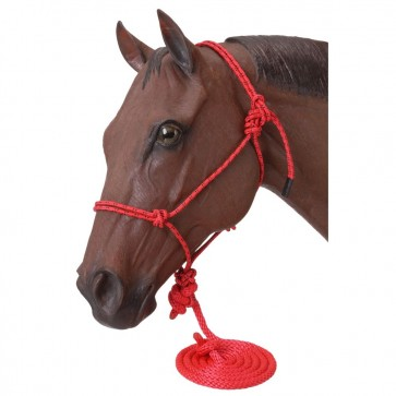 Tough-1 Poly Rope Tied Halter w/ Lead