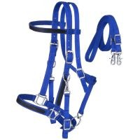 Nylon Halter/Bridle Combo with Reins