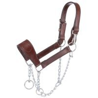 Leather Mule Halter with Draw Chain